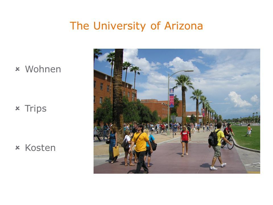 The University of Arizona Wohnen Trips Kosten