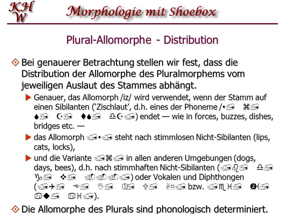 Plural-Allomorphe - Distribution Bei genauerer Betrachtung stellen wir fest, dass die Distribution der Allomorphe des Pluralmorphems vom jeweiligen Au
