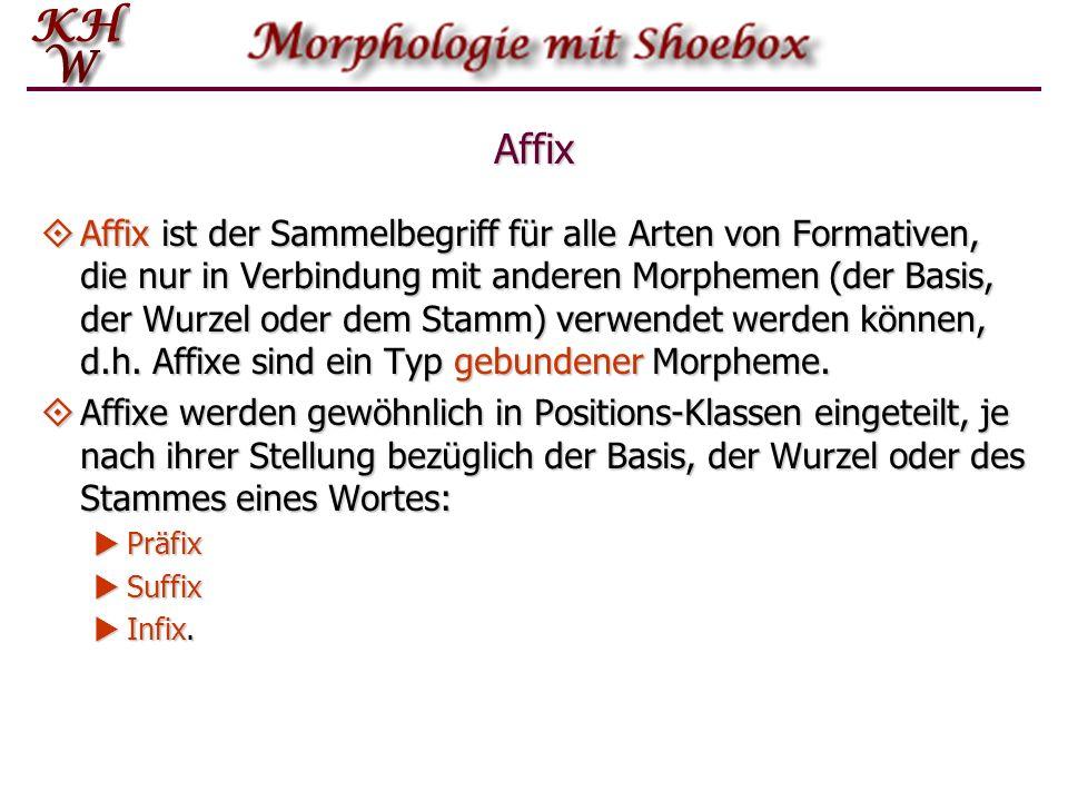 Affix Affix ist der Sammelbegriff für alle Arten von Formativen, die nur in Verbindung mit anderen Morphemen (der Basis, der Wurzel oder dem Stamm) ve