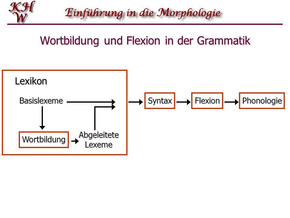 Wortbildung und Flexion in der Grammatik Basislexeme Wortbildung Abgeleitete Lexeme Lexikon SyntaxFlexionPhonologie