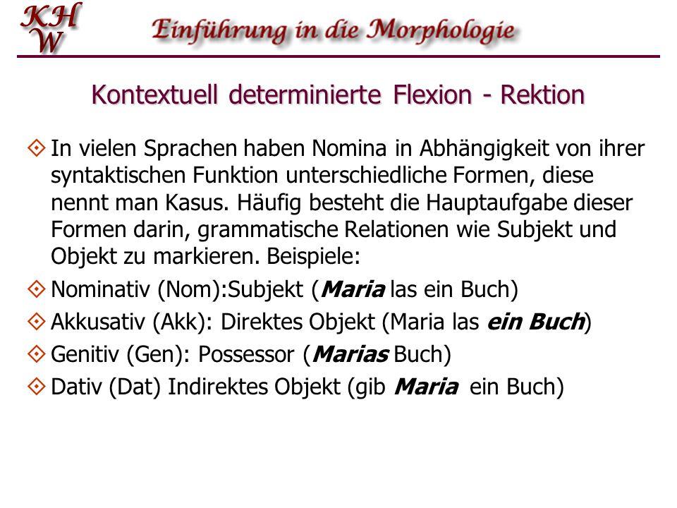 Kontextuell determinierte Flexion - Rektion In vielen Sprachen haben Nomina in Abhängigkeit von ihrer syntaktischen Funktion unterschiedliche Formen,