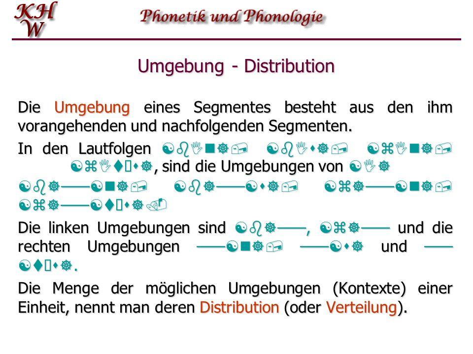 Distinktive Merkmale Damit zwei Lautsegmente distinktive Funktion haben können, müssen sie zumindest im Prinzip in der gleichen Position vorkommen kön