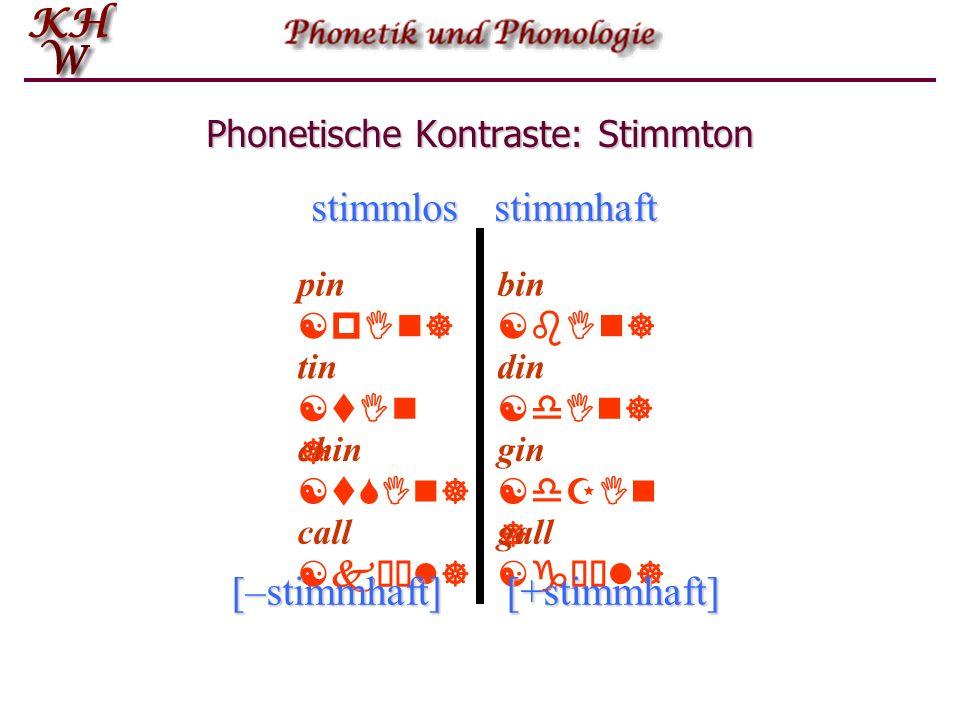 Phonetische Kontraste: Stimmton pin [pIn] bin [bIn] tin [tIn ] chin [tSIn] din [dIn] gin [dZIn ] gall [gùl] call [kùl] stimmlosstimmhaft [–stimmhaft][+stimmhaft]