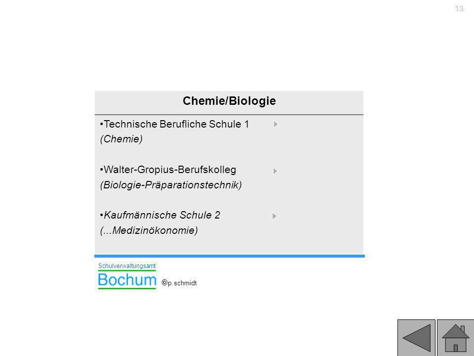 13 Chemie/Biologie Technische Berufliche Schule 1 (Chemie) Walter-Gropius-Berufskolleg (Biologie-Präparationstechnik) Kaufmännische Schule 2 (...Mediz