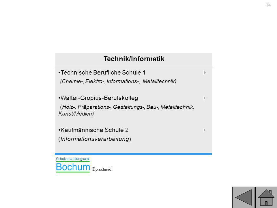14 Technik/Informatik Technische Berufliche Schule 1 (Chemie-, Elektro-, Informations-, Metalltechnik) Walter-Gropius-Berufskolleg ( Holz-, Präparatio