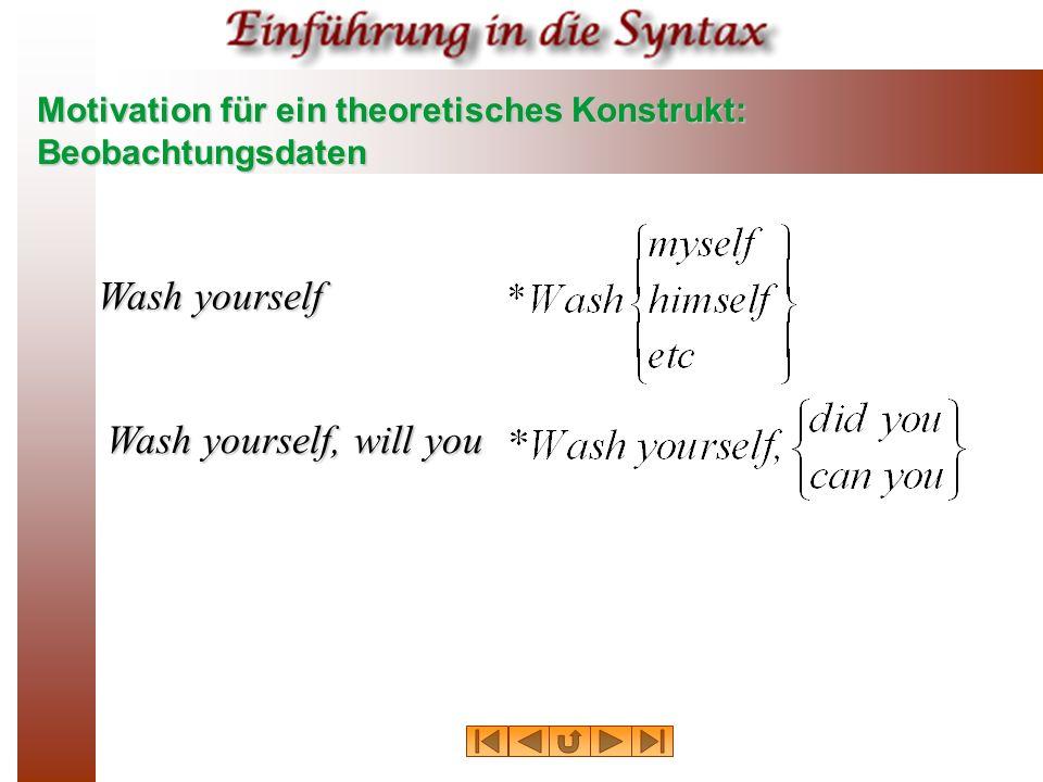 Motivation für ein theoretisches Konstrukt: Beobachtungsdaten Wash yourself Wash yourself, will you