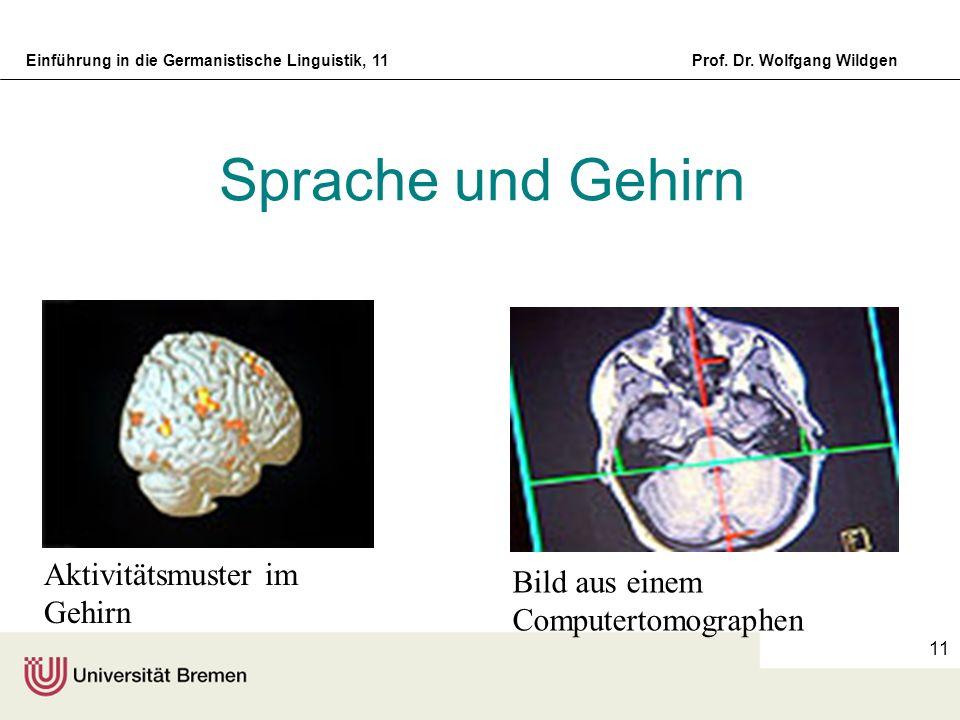 Einführung in die Germanistische Linguistik, 11Prof. Dr. Wolfgang Wildgen 11 Sprache und Gehirn Aktivitätsmuster im Gehirn Bild aus einem Computertomo