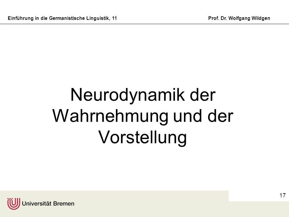 Einführung in die Germanistische Linguistik, 11Prof. Dr. Wolfgang Wildgen 17 Neurodynamik der Wahrnehmung und der Vorstellung