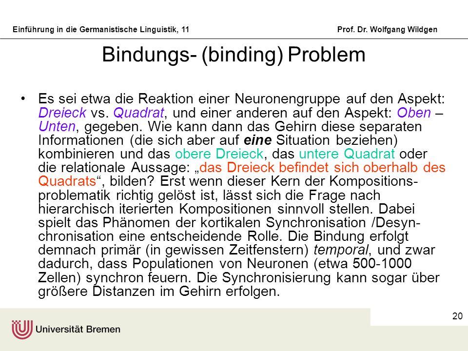 Einführung in die Germanistische Linguistik, 11Prof. Dr. Wolfgang Wildgen 20 Bindungs- (binding) Problem Es sei etwa die Reaktion einer Neuronengruppe