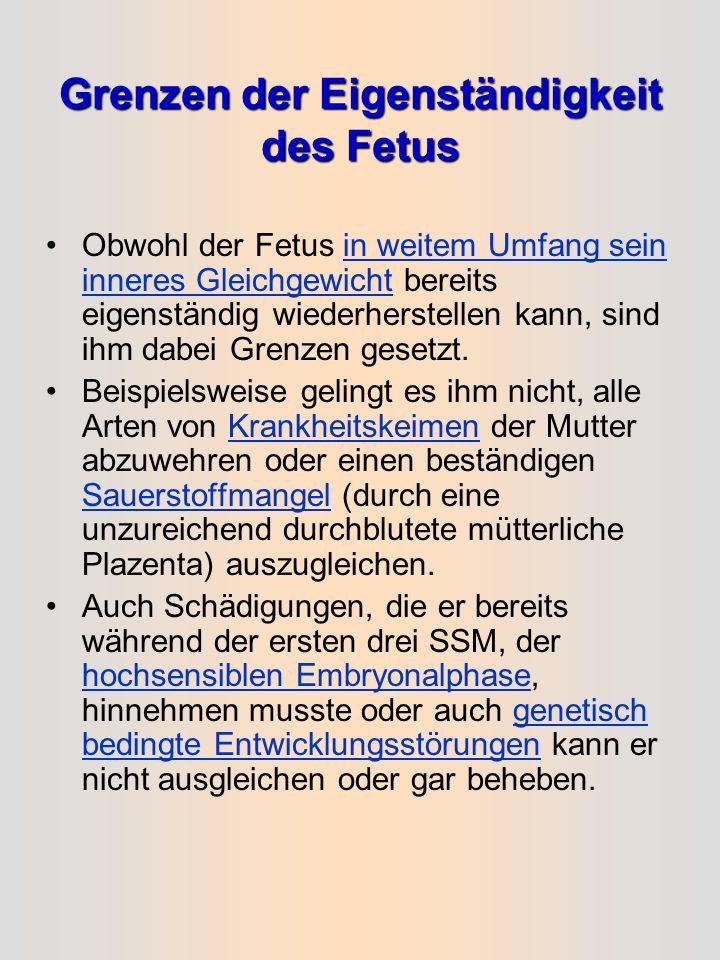 Der Fetus als eigenständiges System Bereits der vier Monate alte Fetus stellt ein eigenständiges System dar mit eigenem Kreislauf, in dem das Herz sch