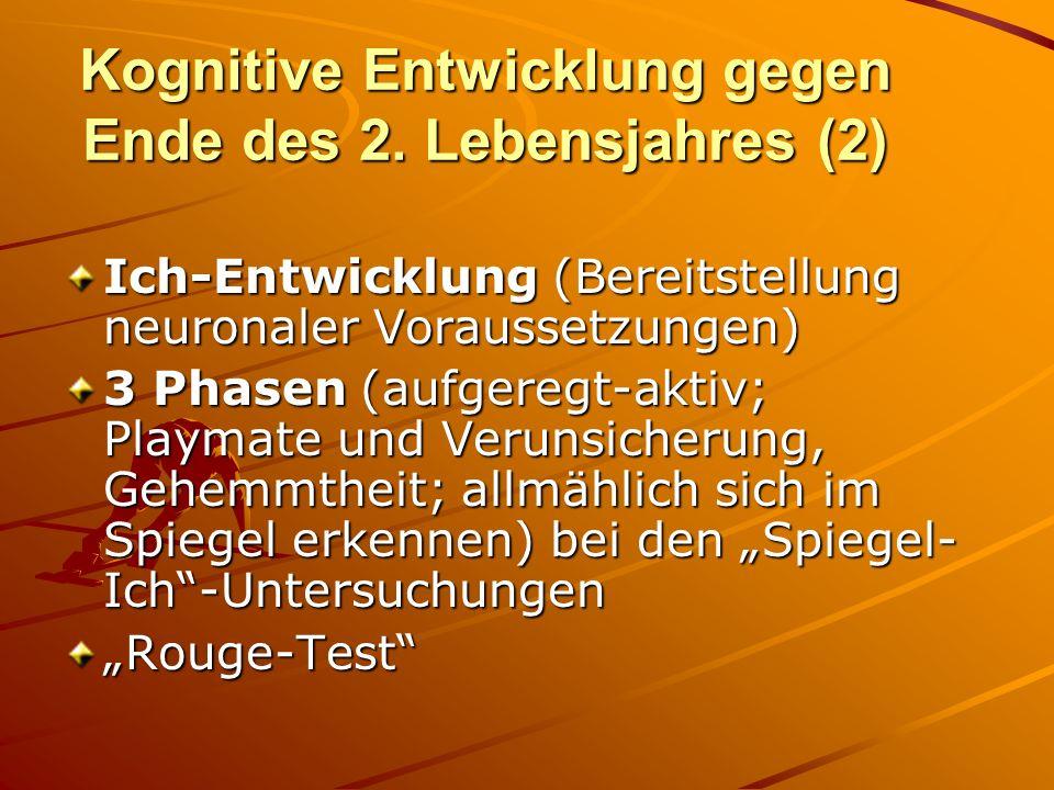 Kognitive Entwicklung gegen Ende des 2. Lebensjahres (2) Ich-Entwicklung (Bereitstellung neuronaler Voraussetzungen) 3 Phasen (aufgeregt-aktiv; Playma