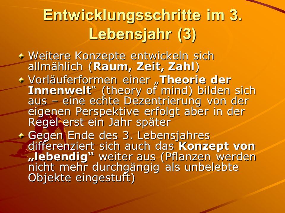 Entwicklungsschritte im 3. Lebensjahr (3) Weitere Konzepte entwickeln sich allmählich (Raum, Zeit, Zahl) Vorläuferformen einer Theorie der Innenwelt (