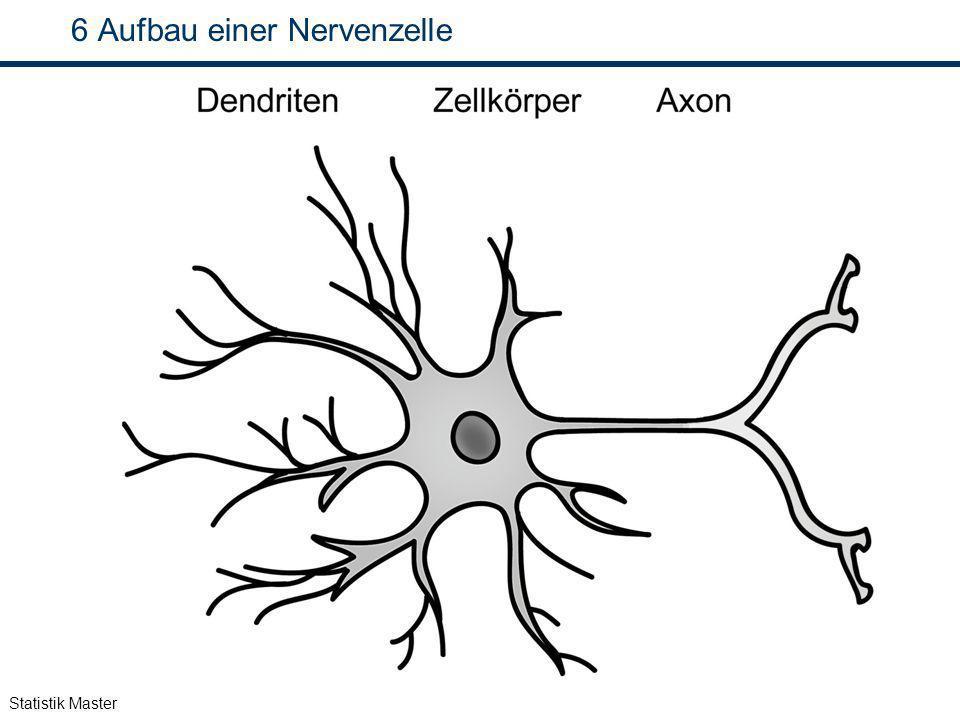 Statistik Master 6 Aufbau einer Nervenzelle