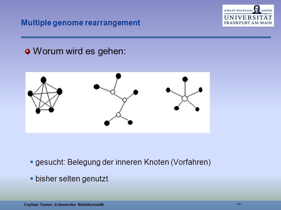 Ceyhun Tamer, 6.Semester Bioinformatik - 45 - Multiple genome rearrangement Worum wird es gehen: gesucht: Belegung der inneren Knoten (Vorfahren) bisher selten genutzt