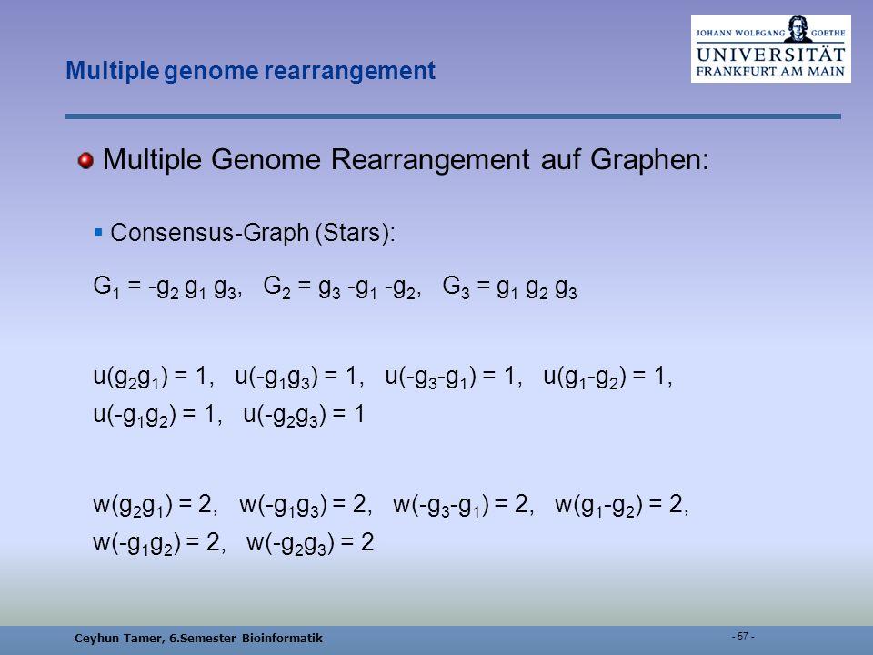 Ceyhun Tamer, 6.Semester Bioinformatik - 57 - Multiple genome rearrangement Multiple Genome Rearrangement auf Graphen: Consensus-Graph (Stars): G 1 = -g 2 g 1 g 3, G 2 = g 3 -g 1 -g 2, G 3 = g 1 g 2 g 3 u(g 2 g 1 ) = 1, u(-g 1 g 3 ) = 1, u(-g 3 -g 1 ) = 1, u(g 1 -g 2 ) = 1, u(-g 1 g 2 ) = 1, u(-g 2 g 3 ) = 1 w(g 2 g 1 ) = 2, w(-g 1 g 3 ) = 2, w(-g 3 -g 1 ) = 2, w(g 1 -g 2 ) = 2, w(-g 1 g 2 ) = 2, w(-g 2 g 3 ) = 2