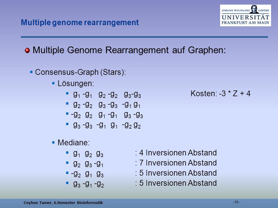 Ceyhun Tamer, 6.Semester Bioinformatik - 59 - Multiple genome rearrangement Multiple Genome Rearrangement auf Graphen: Consensus-Graph (Stars): Lösungen: g 1 -g 1 g 2 -g 2 g 3 -g 3 Kosten: -3 * Z + 4 g 2 -g 2 g 3 -g 3 -g 1 g 1 -g 2 g 2 g 1 -g 1 g 3 -g 3 g 3 -g 3 -g 1 g 1 -g 2 g 2 Mediane: g 1 g 2 g 3 : 4 Inversionen Abstand g 2 g 3 -g 1 : 7 Inversionen Abstand -g 2 g 1 g 3 : 5 Inversionen Abstand g 3 -g 1 -g 2 : 5 Inversionen Abstand