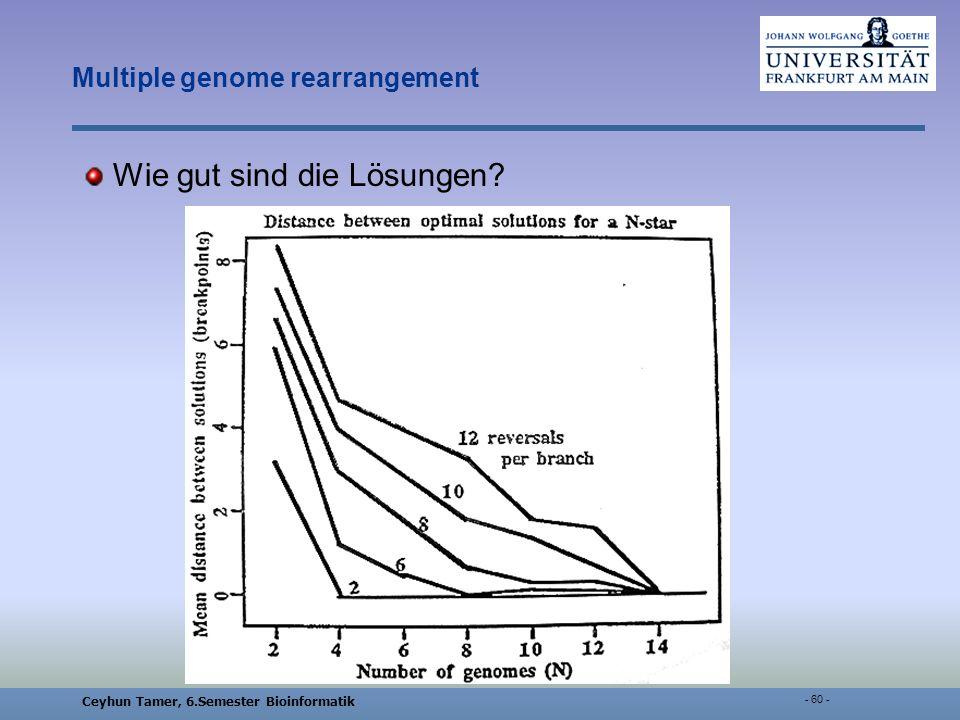 Ceyhun Tamer, 6.Semester Bioinformatik - 60 - Multiple genome rearrangement Wie gut sind die Lösungen?