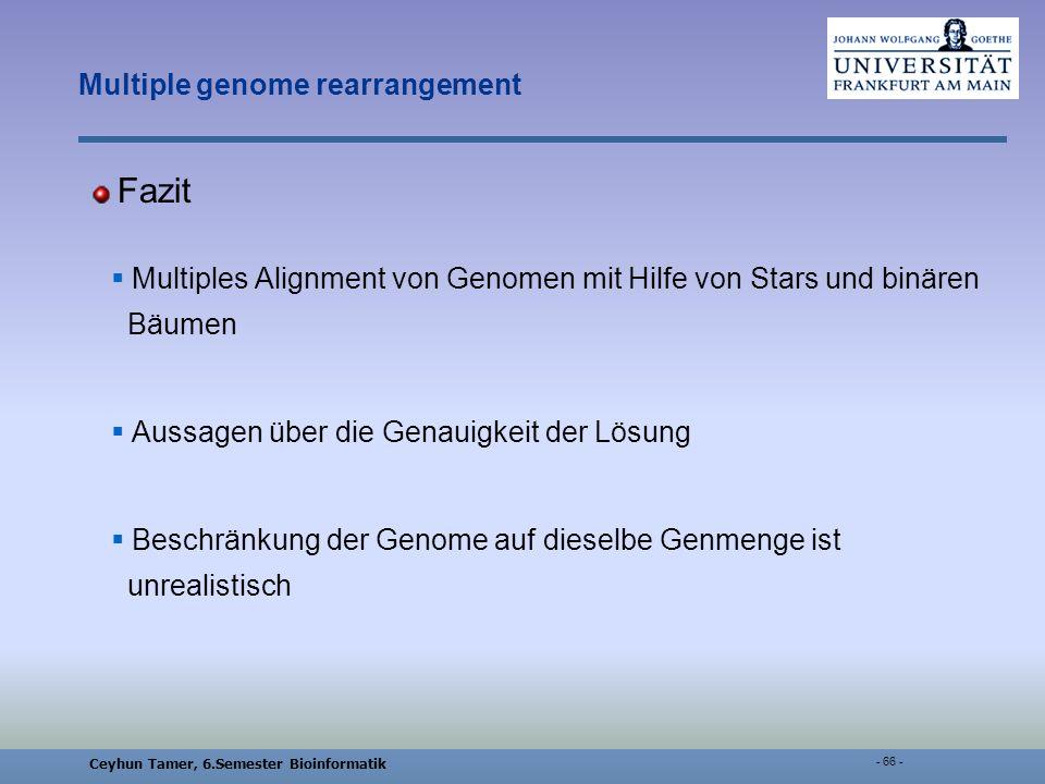 Ceyhun Tamer, 6.Semester Bioinformatik - 66 - Multiple genome rearrangement Fazit Multiples Alignment von Genomen mit Hilfe von Stars und binären Bäumen Aussagen über die Genauigkeit der Lösung Beschränkung der Genome auf dieselbe Genmenge ist unrealistisch