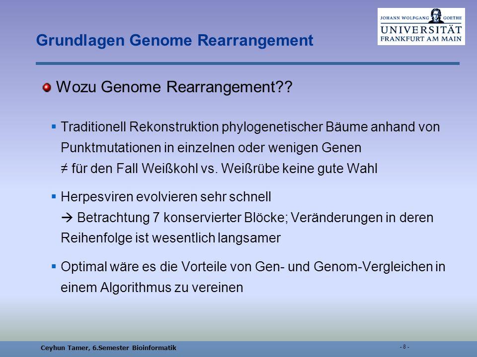Ceyhun Tamer, 6.Semester Bioinformatik - 29 - Multiple genome rearrangement: a general approach via the evolutionary genome graph ein evolutionsbasiertes Modell der Genom-Entwicklung weighting scheme: Gewichtung für Inversionen und Insertionen für eine Transformation f A ist das Gewicht w(f A ) =  A  Bestimmung der Ähnlichkeit von A und B : EG-Graph mit A,B є Γ und C gegeben A = f n ° f n-1 ° … f 1 (C) B = g m ° g m-1 ° … g 1 (C) µDG(A,B) =