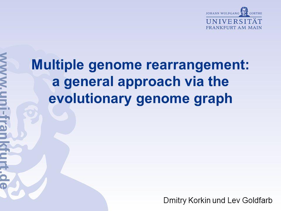 Ceyhun Tamer, 6.Semester Bioinformatik - 40 - Multiple genome rearrangement: a general approach via the evolutionary genome graph Ergebnisse G 1 = D A B E C F G H; G 2 = A D G B C F H E; G 3 = A G B D C F E H; G 4 = G A B D C F E H; G 5 = E G C A F D B H; G 6 = C E A F B G H D.