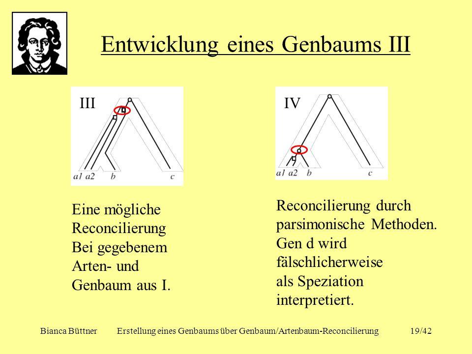 Bianca BüttnerErstellung eines Genbaums über Genbaum/Artenbaum-Reconcilierung19/42 Entwicklung eines Genbaums III IIIIV Eine mögliche Reconcilierung B