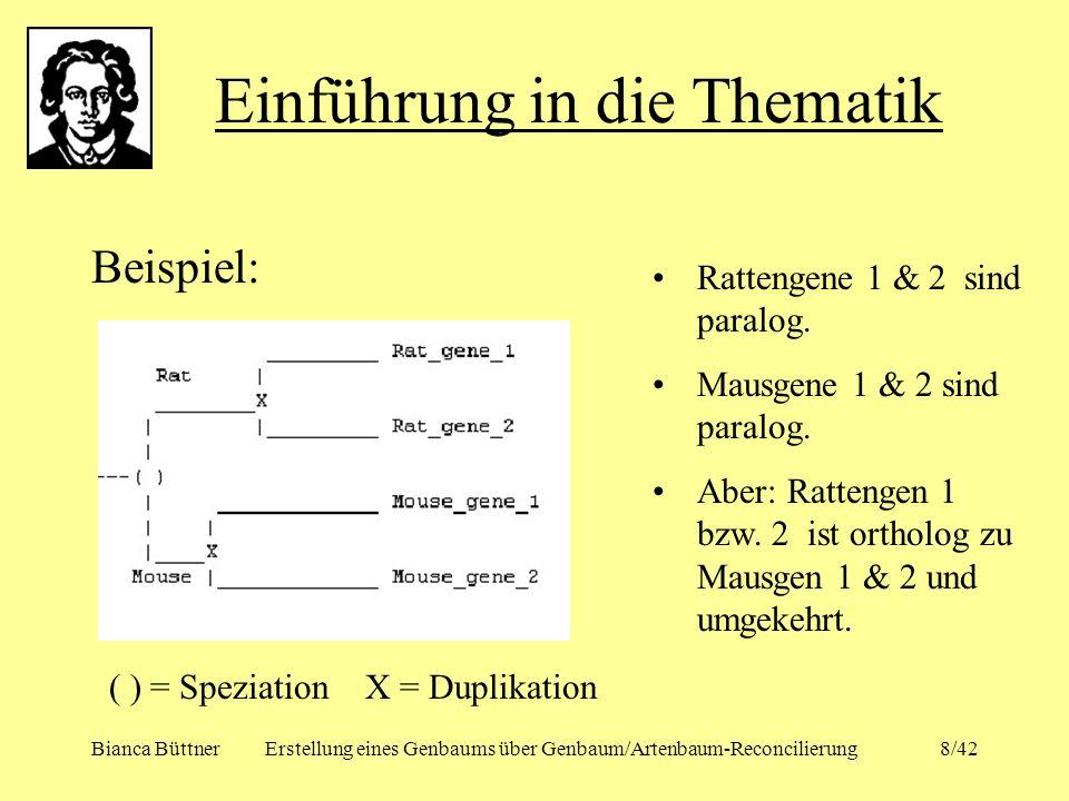 Bianca BüttnerErstellung eines Genbaums über Genbaum/Artenbaum-Reconcilierung8/42 Beispiel: Einführung in die Thematik ( ) = Speziation X = Duplikatio