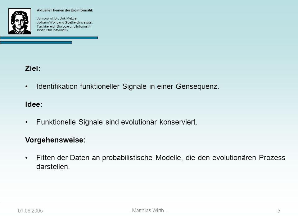 Aktuelle Themen der Bioinformatik Juniorprof. Dr. Dirk Metzler Johann Wolfgang Goethe-Universität Fachbereich Biologie und Informatik Institut für Inf