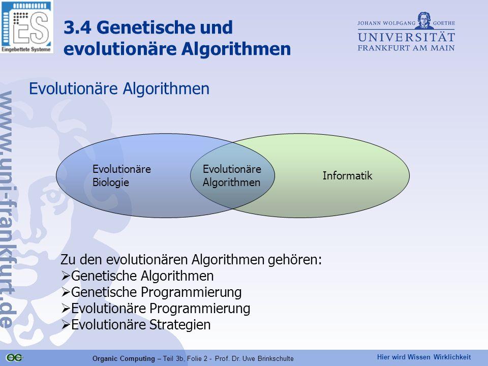 Hier wird Wissen Wirklichkeit Organic Computing – Teil 3b, Folie 2 - Prof. Dr. Uwe Brinkschulte Evolutionäre Algorithmen Zu den evolutionären Algorith