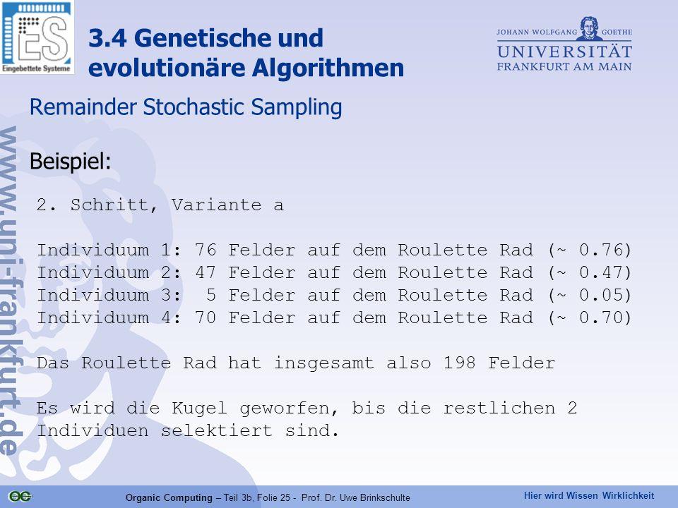 Hier wird Wissen Wirklichkeit Organic Computing – Teil 3b, Folie 25 - Prof. Dr. Uwe Brinkschulte Remainder Stochastic Sampling Beispiel: 3.4 Genetisch