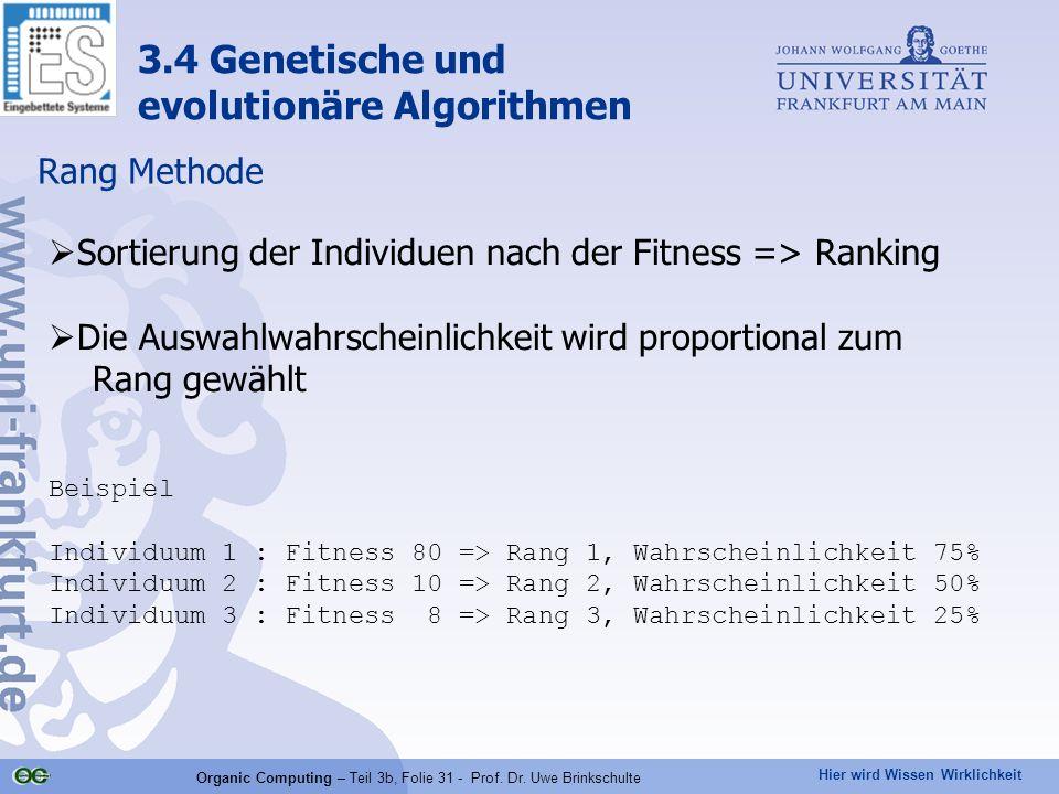Hier wird Wissen Wirklichkeit Organic Computing – Teil 3b, Folie 31 - Prof. Dr. Uwe Brinkschulte Rang Methode Sortierung der Individuen nach der Fitne
