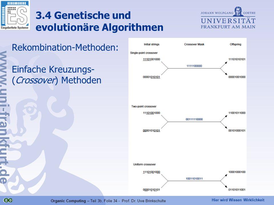 Hier wird Wissen Wirklichkeit Organic Computing – Teil 3b, Folie 34 - Prof. Dr. Uwe Brinkschulte Rekombination-Methoden: Einfache Kreuzungs- (Crossove