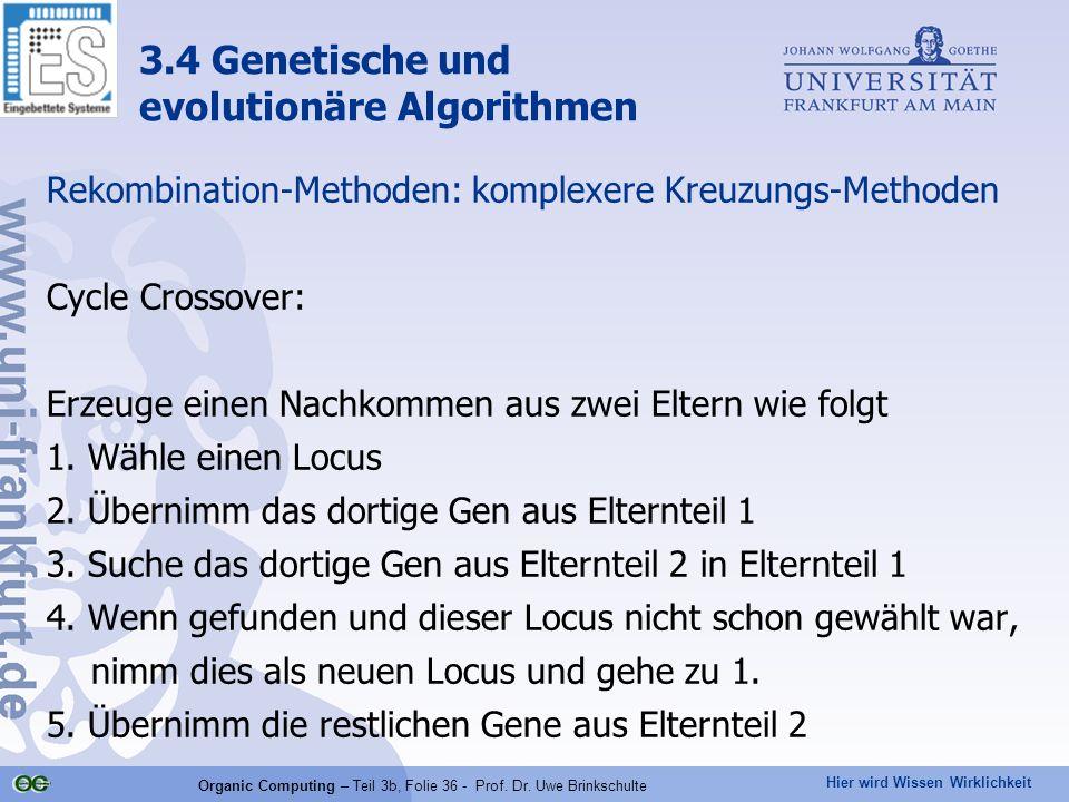 Hier wird Wissen Wirklichkeit Organic Computing – Teil 3b, Folie 36 - Prof. Dr. Uwe Brinkschulte Rekombination-Methoden: komplexere Kreuzungs-Methoden