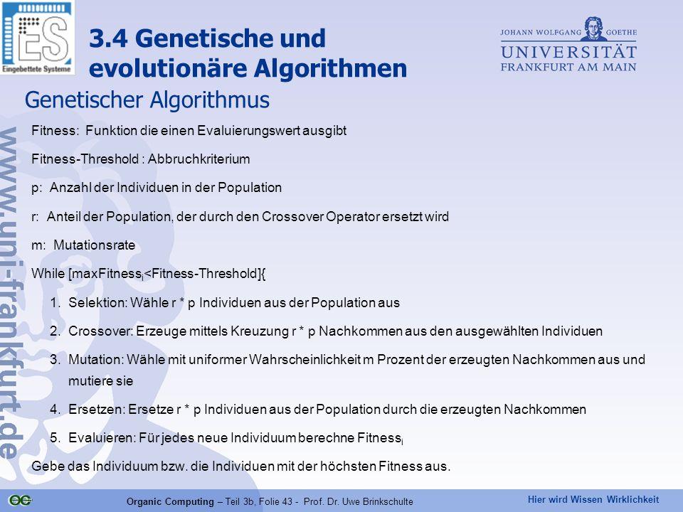 Hier wird Wissen Wirklichkeit Organic Computing – Teil 3b, Folie 43 - Prof. Dr. Uwe Brinkschulte Genetischer Algorithmus Fitness: Funktion die einen E