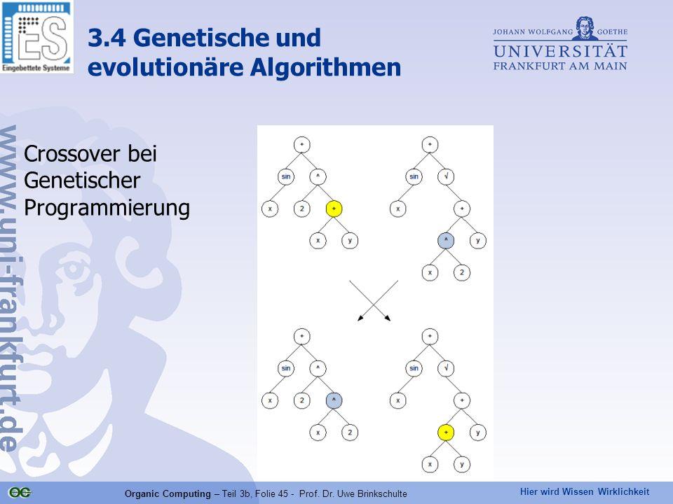 Hier wird Wissen Wirklichkeit Organic Computing – Teil 3b, Folie 45 - Prof. Dr. Uwe Brinkschulte Crossover bei Genetischer Programmierung 3.4 Genetisc