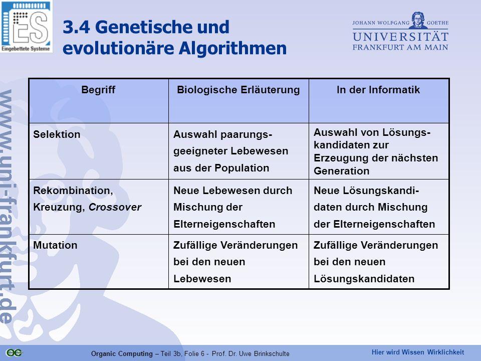 Hier wird Wissen Wirklichkeit Organic Computing – Teil 3b, Folie 6 - Prof. Dr. Uwe Brinkschulte 3.4 Genetische und evolutionäre Algorithmen Zufällige