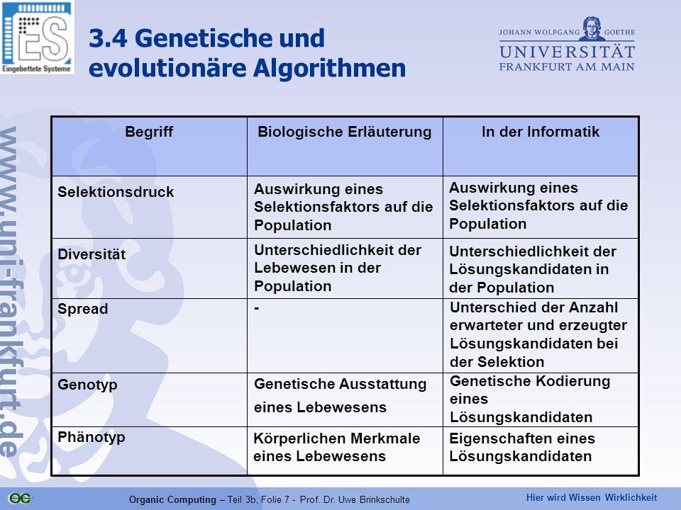 Hier wird Wissen Wirklichkeit Organic Computing – Teil 3b, Folie 7 - Prof. Dr. Uwe Brinkschulte 3.4 Genetische und evolutionäre Algorithmen Genetische