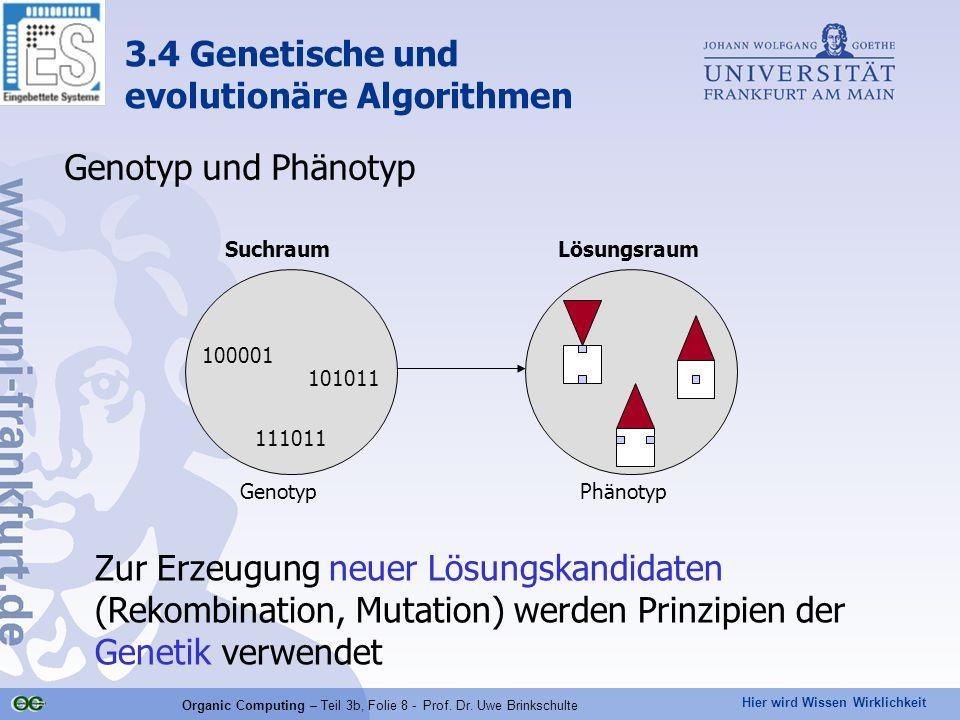 Hier wird Wissen Wirklichkeit Organic Computing – Teil 3b, Folie 8 - Prof. Dr. Uwe Brinkschulte Genotyp und Phänotyp 101011 100001 111011 SuchraumLösu