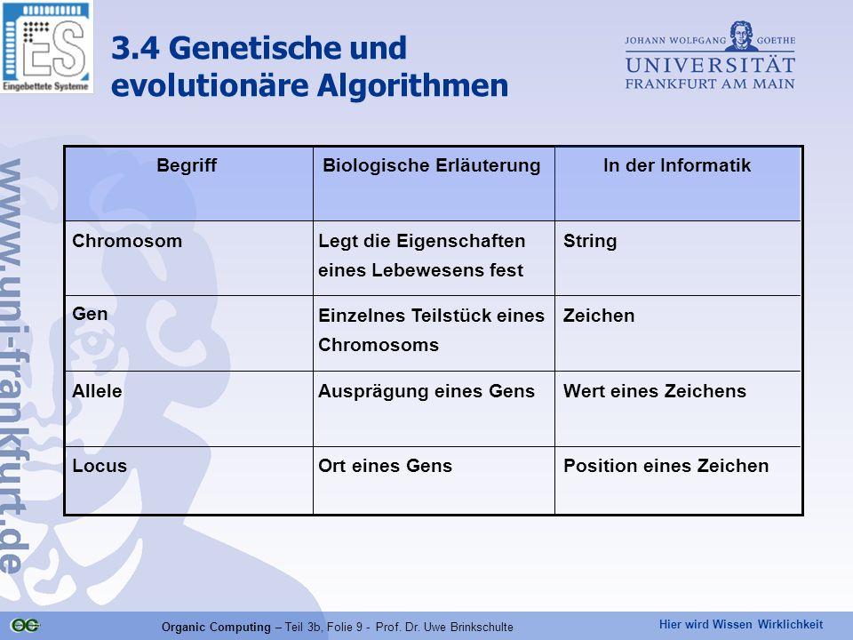 Hier wird Wissen Wirklichkeit Organic Computing – Teil 3b, Folie 9 - Prof. Dr. Uwe Brinkschulte Position eines ZeichenOrt eines GensLocus Wert eines Z