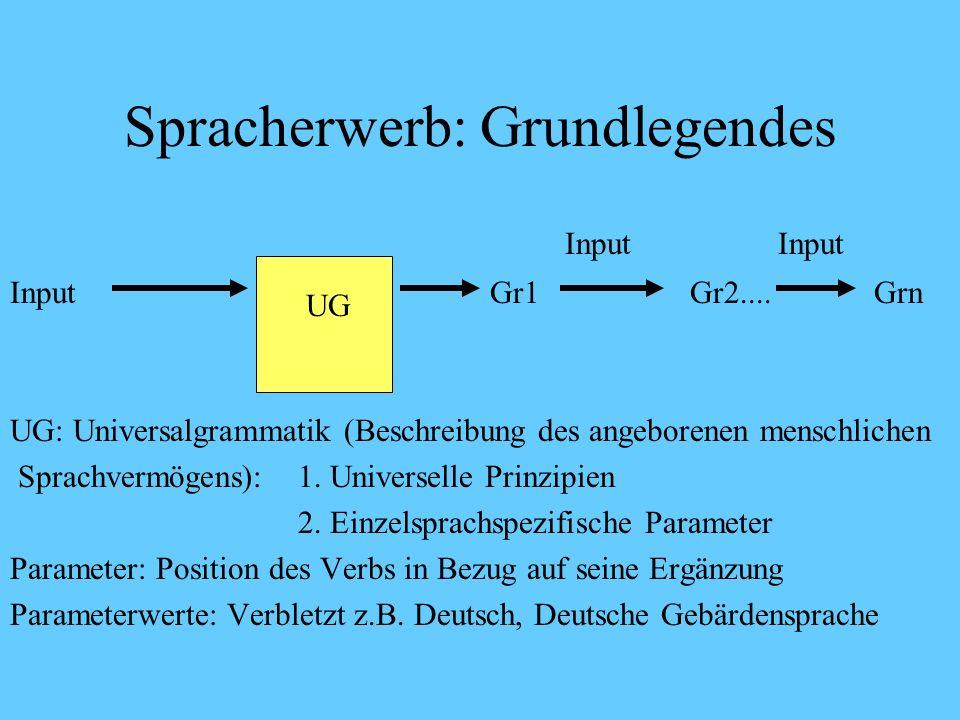 Spracherwerb: Grundlegendes InputInput InputUG Gr1 Gr2....