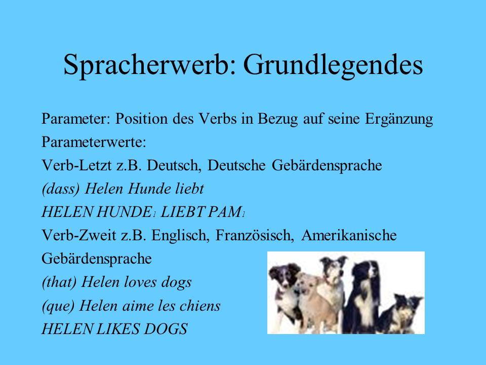 Spracherwerb: Grundlegendes InputInput InputUG Gr1 Gr2.... Grn UG: Universalgrammatik (Beschreibung des angeborenen menschlichen Sprachvermögens): 1.