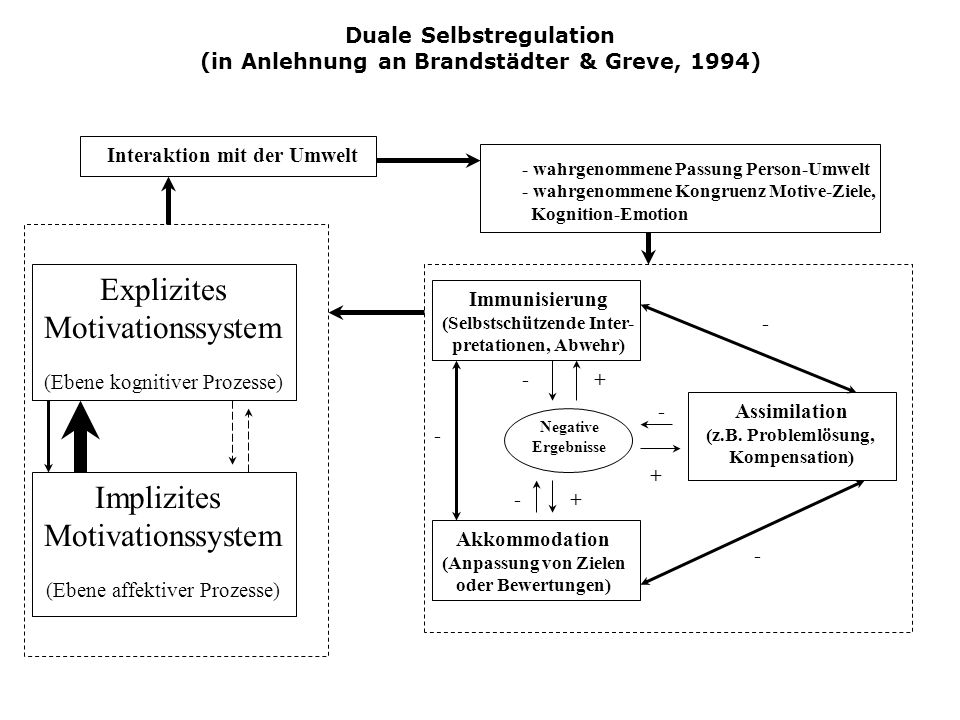 Duale Selbstregulation (in Anlehnung an Brandstädter & Greve, 1994) Implizites Motivationssystem (Ebene affektiver Prozesse) Explizites Motivationssys