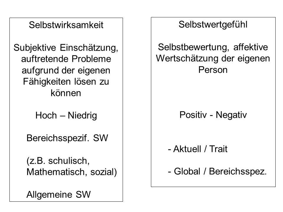 Selbstwirksamkeit Subjektive Einschätzung, auftretende Probleme aufgrund der eigenen Fähigkeiten lösen zu können Hoch – Niedrig Bereichsspezif. SW (z.