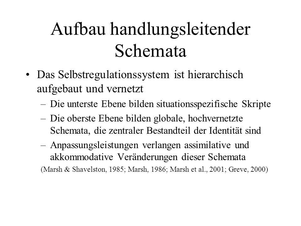 Aufbau handlungsleitender Schemata Das Selbstregulationssystem ist hierarchisch aufgebaut und vernetzt –Die unterste Ebene bilden situationsspezifisch