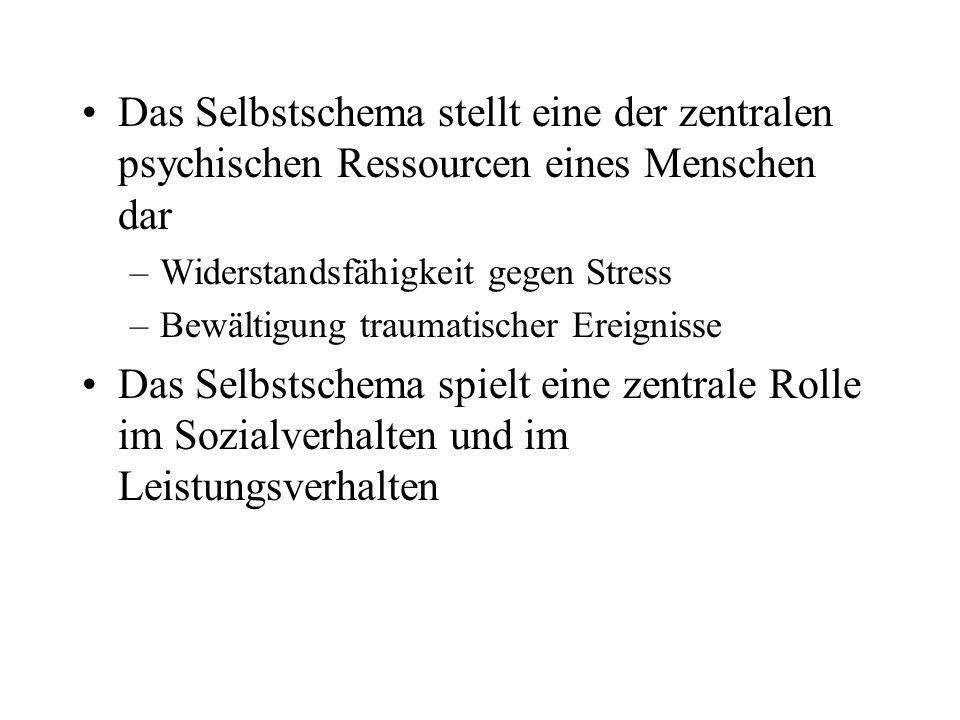 Das Selbstschema stellt eine der zentralen psychischen Ressourcen eines Menschen dar –Widerstandsfähigkeit gegen Stress –Bewältigung traumatischer Ere