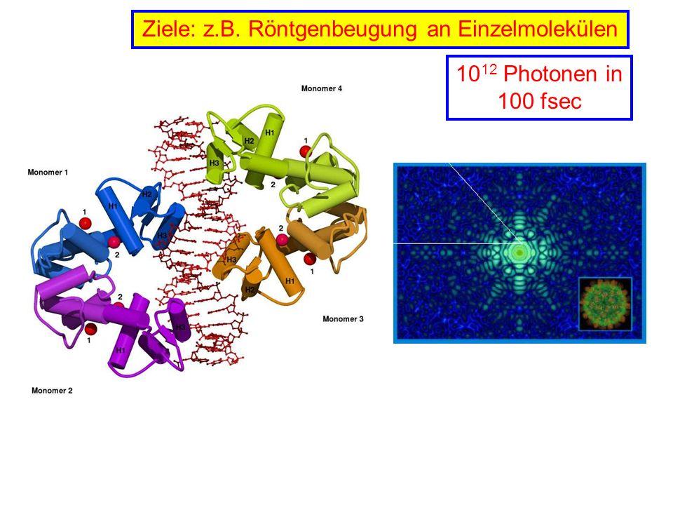 Ziele: z.B. Röntgenbeugung an Einzelmolekülen 10 12 Photonen in 100 fsec
