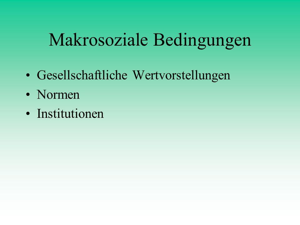Makrosoziale Bedingungen Gesellschaftliche Wertvorstellungen Normen Institutionen