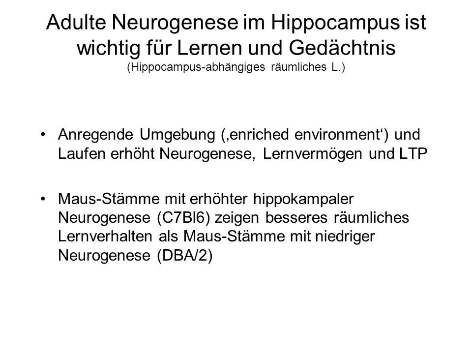 Adulte Neurogenese im Hippocampus ist wichtig für Lernen und Gedächtnis (Hippocampus-abhängiges räumliches L.) Anregende Umgebung (enriched environmen