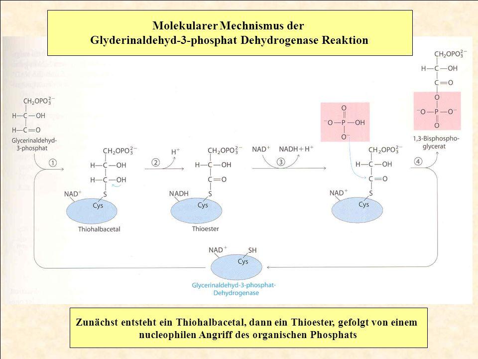 Reaktion von Aldehyden bzw.