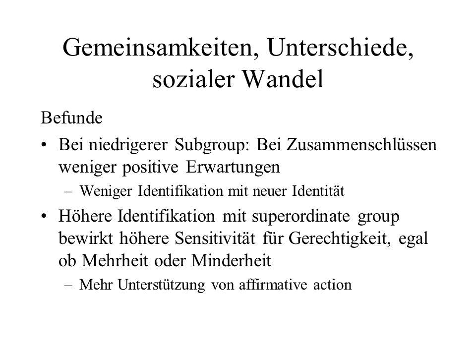Gemeinsamkeiten, Unterschiede, sozialer Wandel Befunde Bei niedrigerer Subgroup: Bei Zusammenschlüssen weniger positive Erwartungen –Weniger Identifik