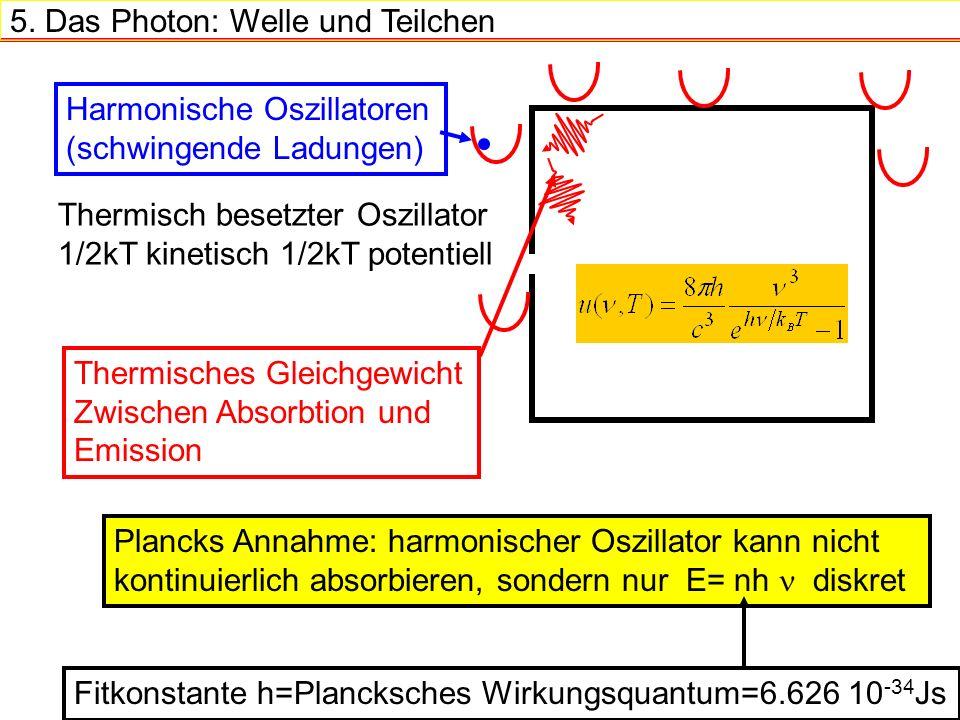 5. Das Photon: Welle und Teilchen Thermisch besetzter Oszillator 1/2kT kinetisch 1/2kT potentiell Harmonische Oszillatoren (schwingende Ladungen) Ther